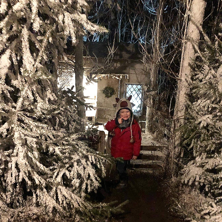 365 Happiness Project 2019 – My December in Pictures #2